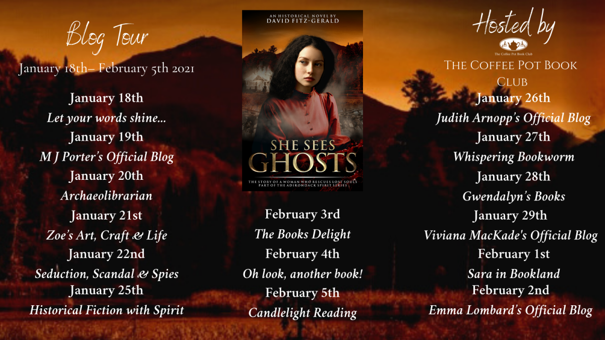 Welcome to today's stop on the She Sees Ghosts by David Fitz-Gerald Blog Tour